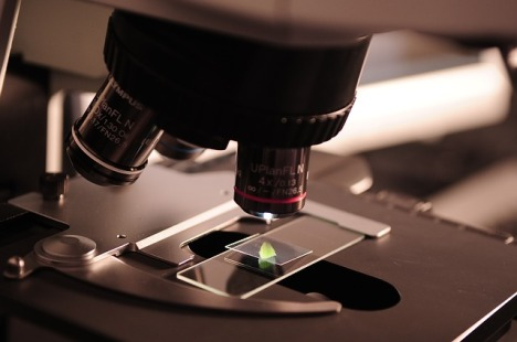 microscope-385364_640
