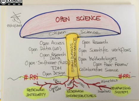Seta del open science